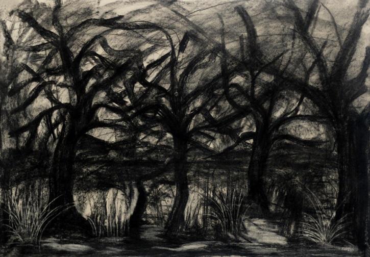Mothimakoscapes I, 2014, Khehla Chepape Makgato - Charcoal drawing