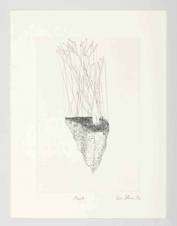 assets, 2012 - Sean Slemon - Hardground etching